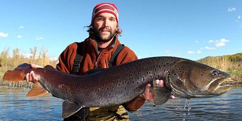 поймать большую рыбу во сне