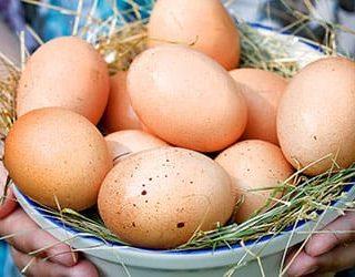 Собирать яйца