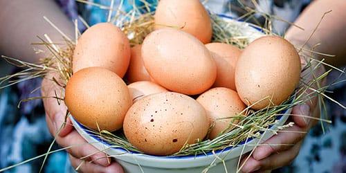 собирать яйца во сне