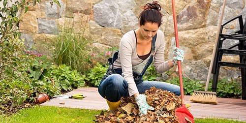 сгребать сухие листья
