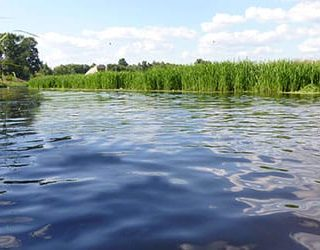 К чему снится вода в реке?
