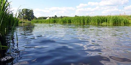 к чему снится вода в реке