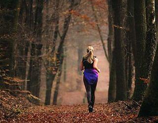 Бежать по лесу