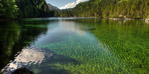 видеть во сне чистое озеро