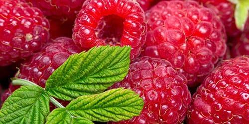 к чему снится есть ягоды