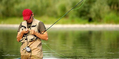 ловля рыбы во сне