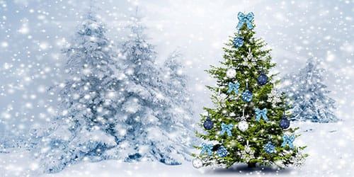 видеть во сне новогоднюю елку