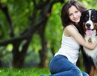 Обнимать собаку