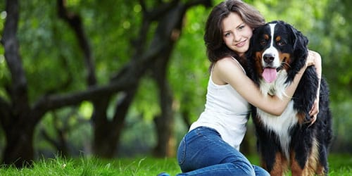 к чему снится обнимать собаку