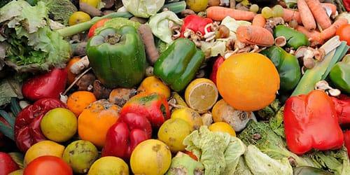 во сне купить овощи подборку фото приколов