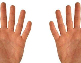 К чему снятся пальцы на руках?