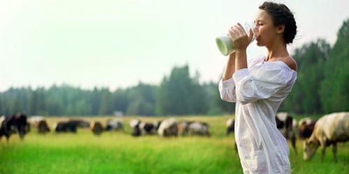 парное коровье молочко