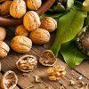 собирать грецкие орехи во сне