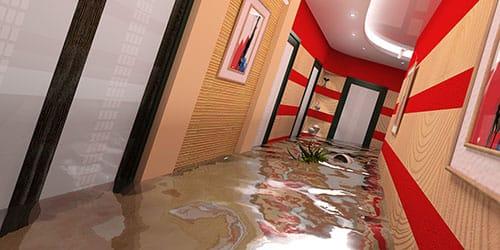 жилье затоплено
