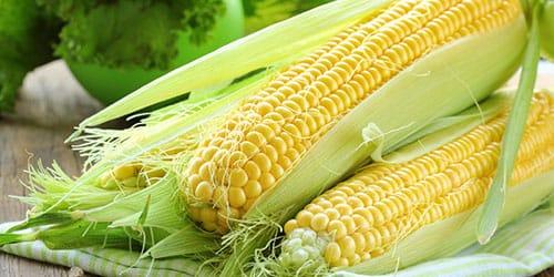 видеть во сне кукурузу в початках