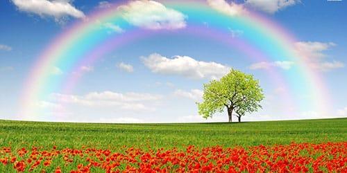 к чему снится радуга в небе