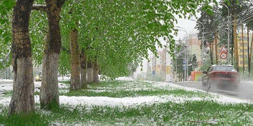 бачыць у сне снег летам