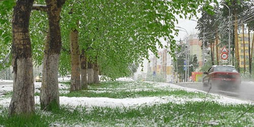 видеть во сне снег летом