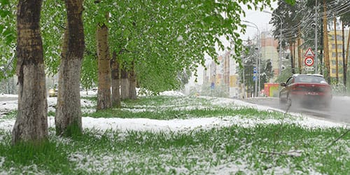 снег выпал летом