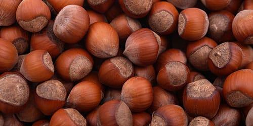 к чему снится собирать орехи