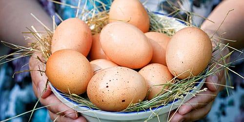 видеть во сне сырые куриные яйца