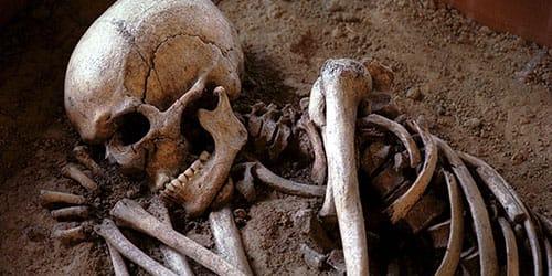 к чему снятся кости человека