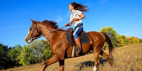 ехать во сне верхом на коне