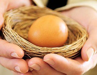 Яйцо с зародышем