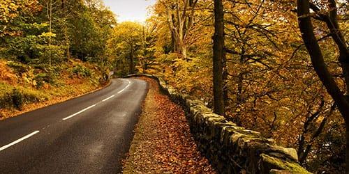 к чему снится обочина дороги