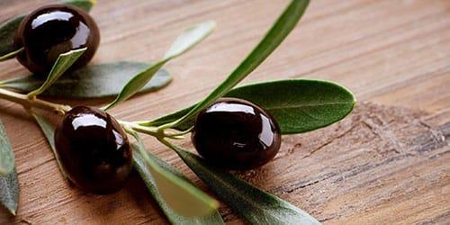 черные маслины