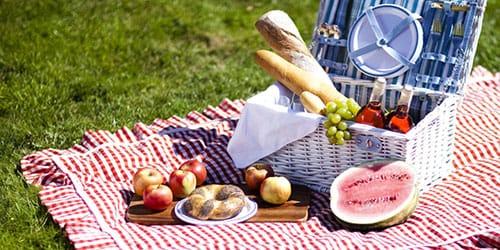 пикник во сне