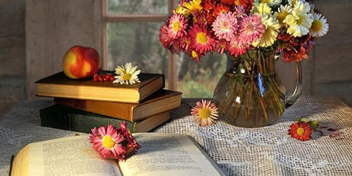высохшие цветы