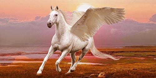 белый скакун