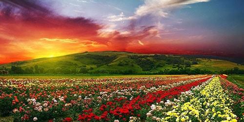 к чему снится попасть в рай