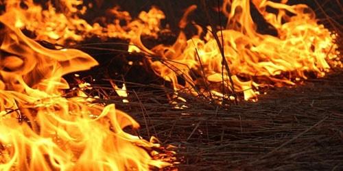 к чему снится убегать от огня