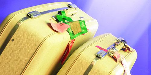 чемоданы