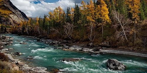 видеть во сне бурлящую воду в реке