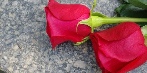 видеть во сне цветы на могиле