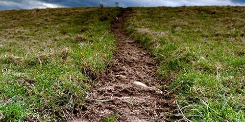 грязь и земля во сне