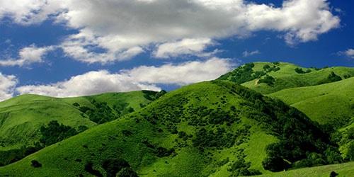 видеть во сне зеленый холм