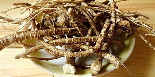 к чему снятся корни лекарственных трав