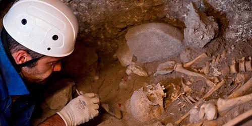 откопать скелет