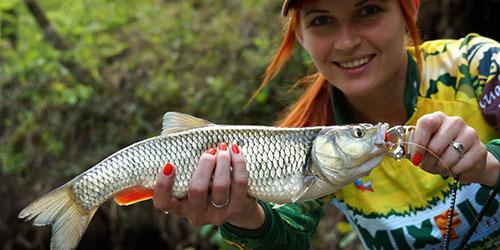 к чему снится ловить рыбу женщине