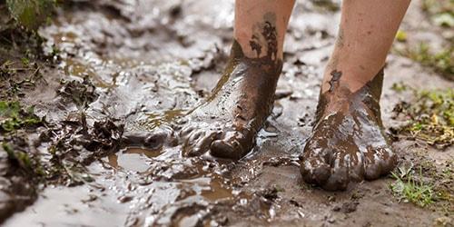 к чему снится топтать грязь