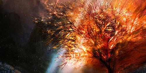 к чему снится горящее дерево