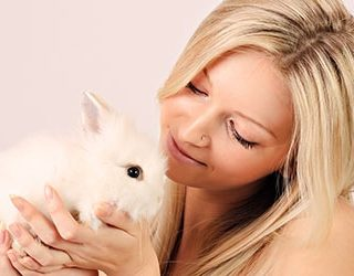 Кролик на руках