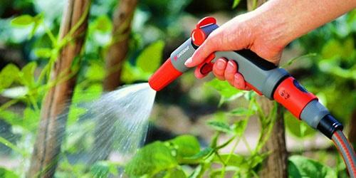 орошать растения