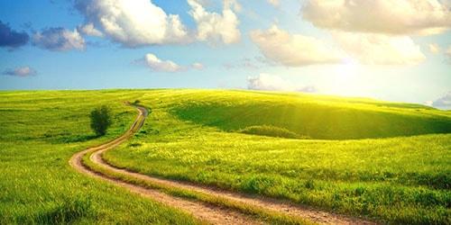 к чему снится проселочная дорога