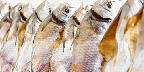 к чему снится сушить рыбу