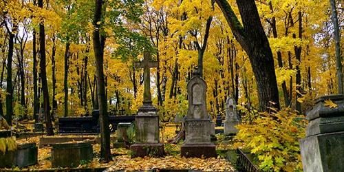 ходить по кладбищу во сне